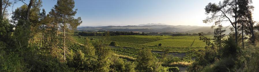The View at Raventos i Blanc